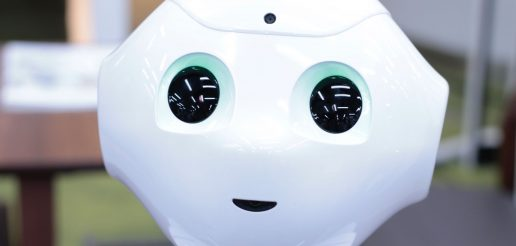 RoBò: robot for social innovation and disabilities