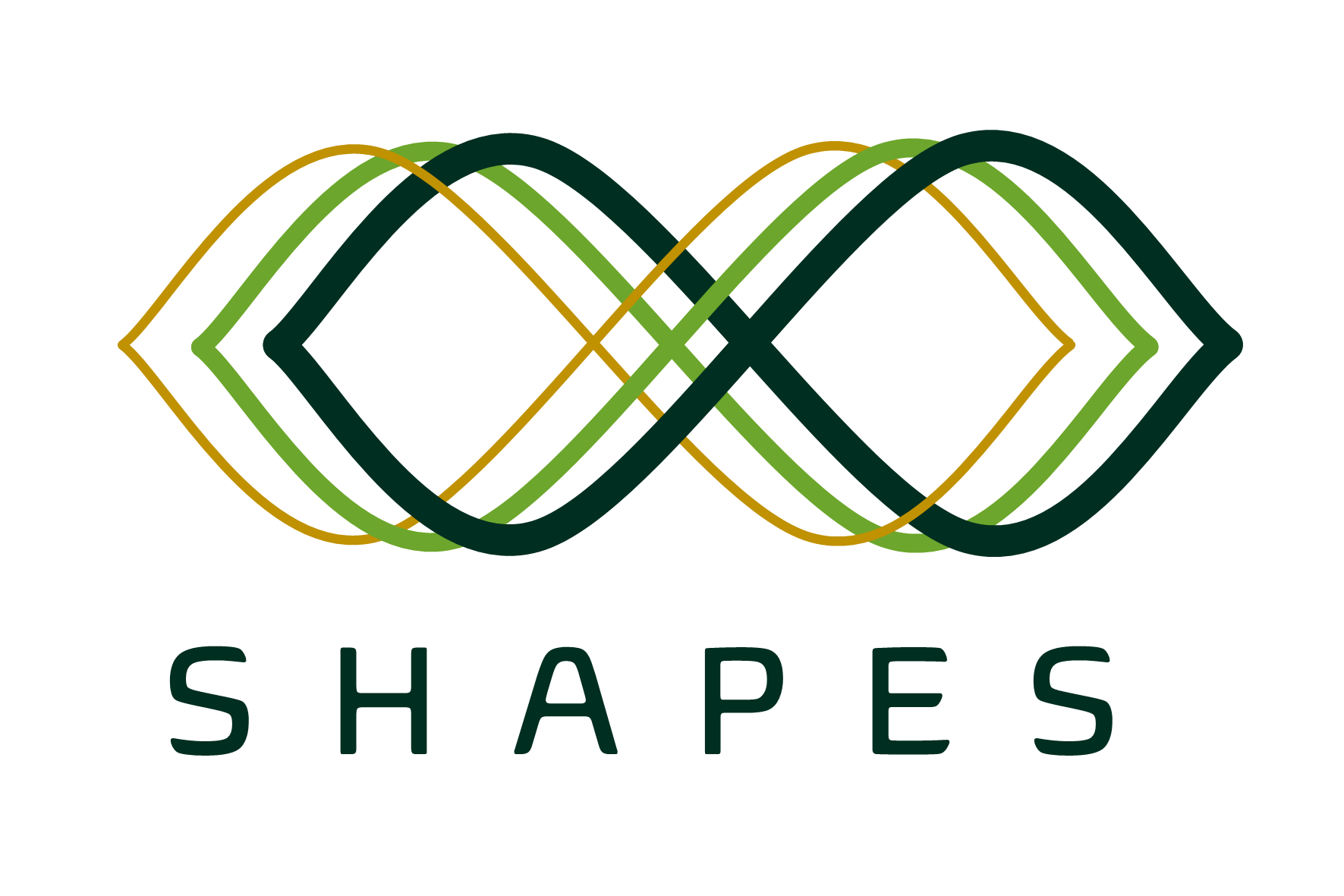 Shapes 2nd Dialogue Workshop
